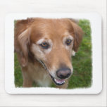 Beautiful Golden Retriever Mouse Pad