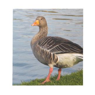 Beautiful goose bird note pads