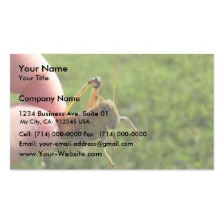 Beautiful Grass Hopper In Hand Business Cards