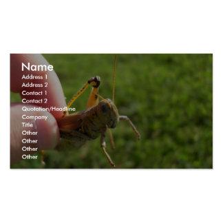 Beautiful Grass Hopper In Hand Business Card Template