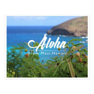 Beautiful green and blue from Maui Hawaii postcard
