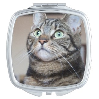 Beautiful Green-Eyed Brown Tabby Cat Makeup Mirror