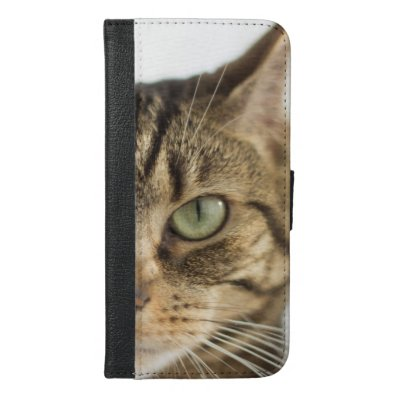 Beautiful green eyed tabby iPhone 6/6S plus wallet case