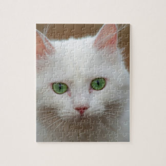 Beautiful green eyed white cat portrait. jigsaw puzzle