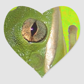 Beautiful green tree frog giviing the peace sign. heart sticker
