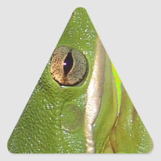 Beautiful green tree frog giviing the peace sign. triangle sticker