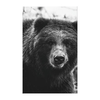 Beautiful Grizzly Bear Photo Canvas Print