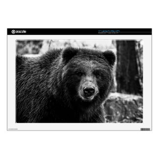 Beautiful Grizzly Bear Photo Decals For Laptops