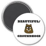 Beautiful/Groundhogs Magnet