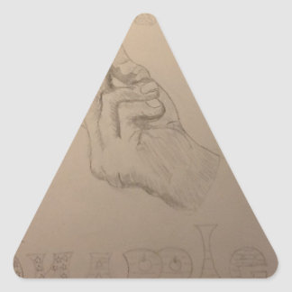 Beautiful hand drawn snapple idea triangle sticker