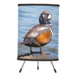 Beautiful Harlequin Duck on the Rock Tripod Lamp