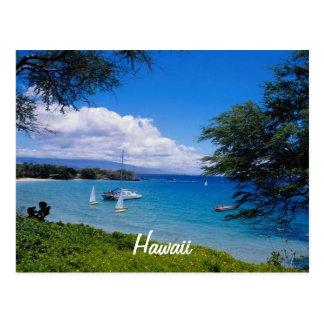 Beautiful Hawaii Postcard