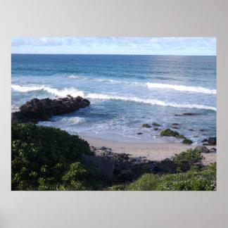 Beautiful Hawaiian Beach Poster