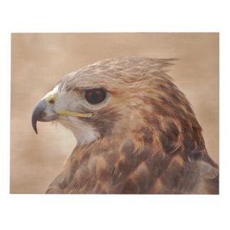 Beautiful hawk side portrait note pad