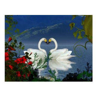 Beautiful heart swans red flowers 1 postcards