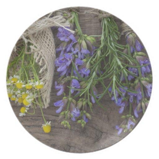 beautiful herbal background dinner plates