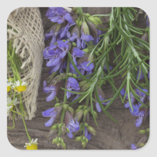 beautiful herbal background square stickers