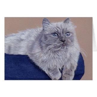 Beautiful Himalayan Cat Greeting Card