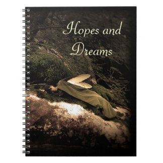 Beautiful! Hopes and Dreams Sleeping Fairy Journal