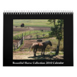 Beautiful Horse 2010 Calendar