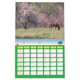 Beautiful Horse 2016 Full Color Calendar 12 Months