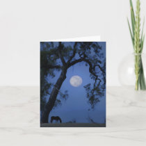 Beautiful Horse and Moon Blank Note Card