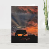 Beautiful Horse and Sunrise Thank You Cards
