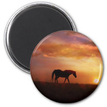 Beautiful Horse and Sunset Horse Photography Magne Magnet