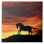 "Beautiful Horse Art Tile<br><div class=""desc"">This is a beautiful Equine art tile with a silhouetted horse against a southwestern sky.</div>"