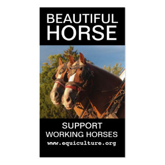 Beautiful Horse Business Card
