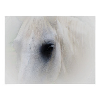 Beautiful Horse Eye Poster