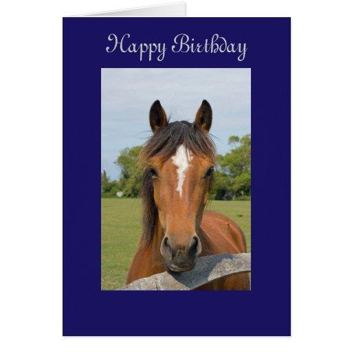 Beautiful Horse Happy Birthday Greetings Card