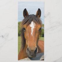 Beautiful horse head bookmark, gift idea