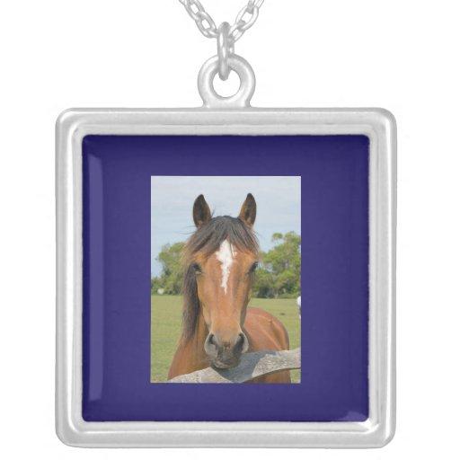 Beautiful horse head chestnut photo necklace