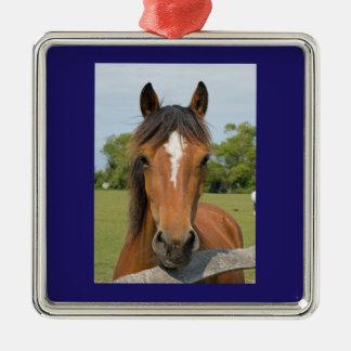 Beautiful horse head chestnut photo ornament