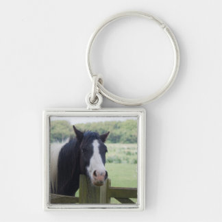 Beautiful Horse head close-up keychain, gift idea Silver-Colored Square Keychain
