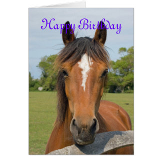 Beautiful horse head happy birthday greetings card