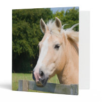 Beautiful horse head palamino photo album, binder
