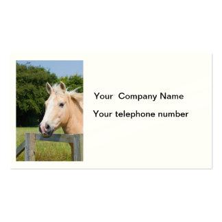 Beautiful horse head palamino photo business card