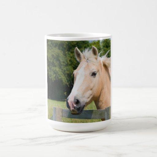Beautiful horse head palamino photo coffee tea mug