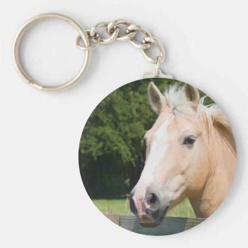 Beautiful horse head palamino photo keychain