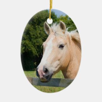 Beautiful horse head palamino photo ornament