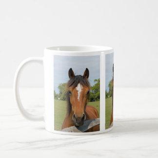 Beautiful horse head photo mug, gift idea