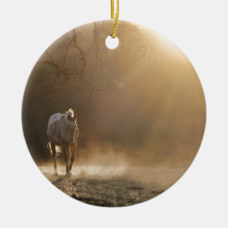 Beautiful Horse in Sunlight Gifts Ceramic Ornament