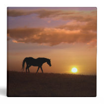 Beautiful Horse in Sunset 3 Ring Binder Notebook