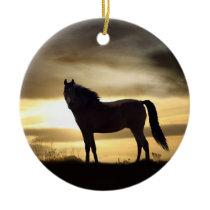 Beautiful Horse in the Sunlight Ornament