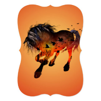 Beautiful horse in the sunset card