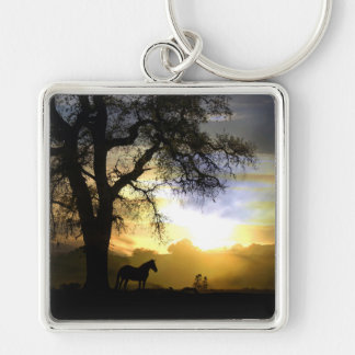Beautiful Horse in the Sunset Keychain