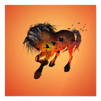 Beautiful horse in the sunset magnetic card