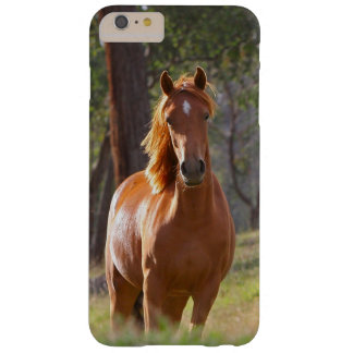 Beautiful Horse iPhone 6 Plus Case Horse Lovers